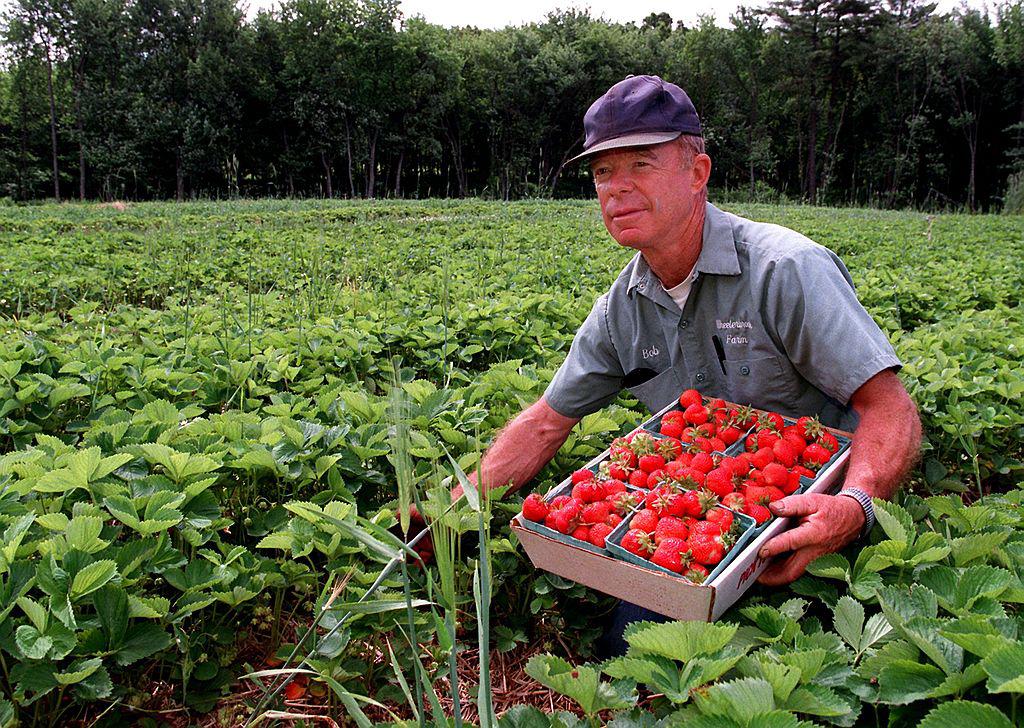 farmers-credit-146525514