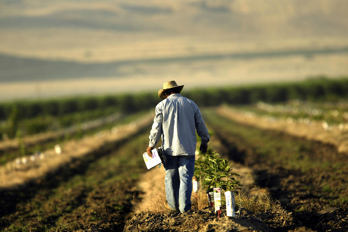 Idaho: Farming