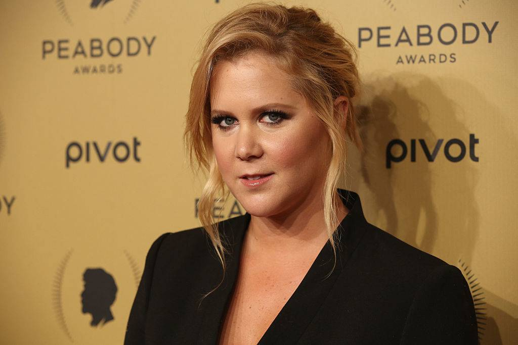Picture of Amy Schumer