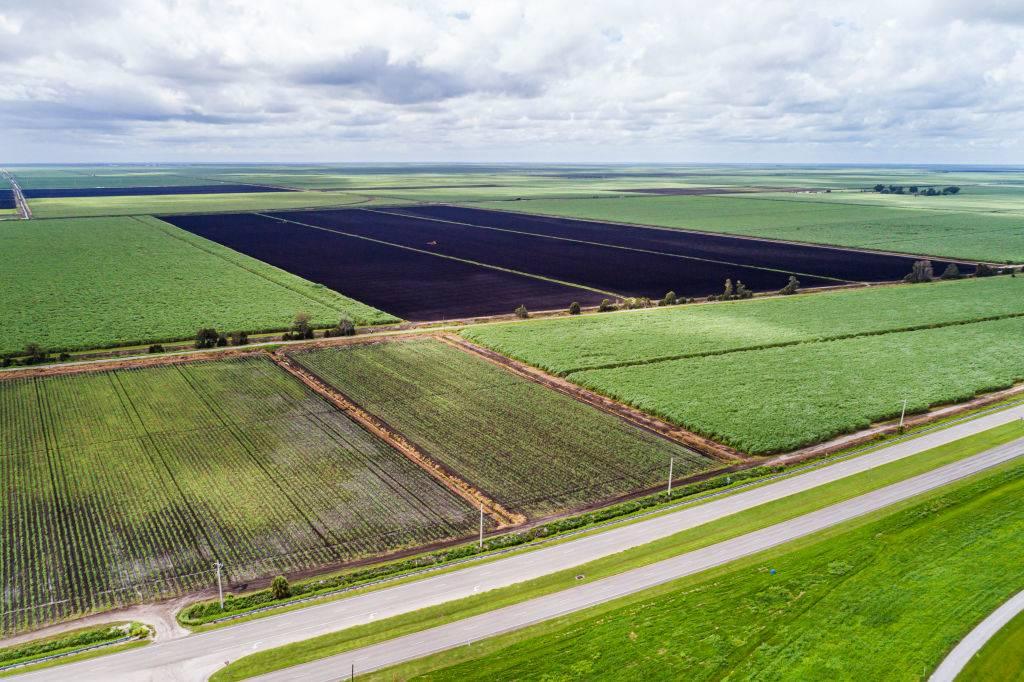 florida-farmland