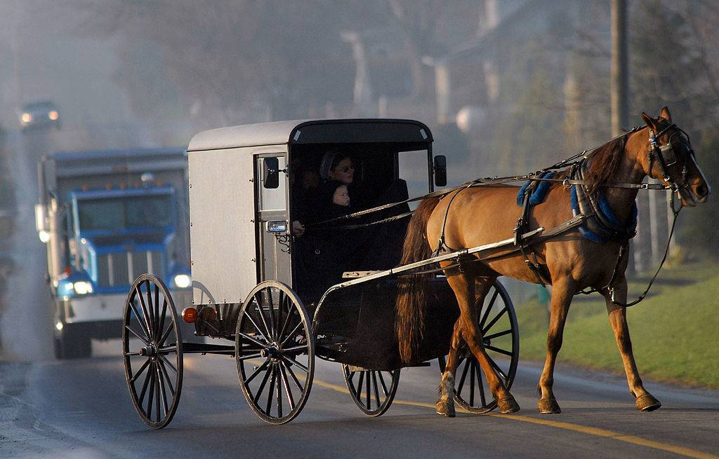 Amish children arrive via horse and buggy